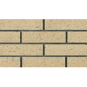 Environmental Friendly Clay Thin Brick